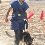 Demining_Apron_Mine_Detection_Dogs_MDD